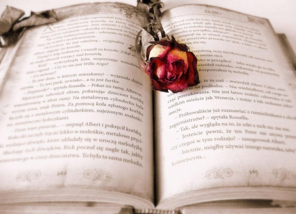Libros que debes leer para volver a creer en el amor